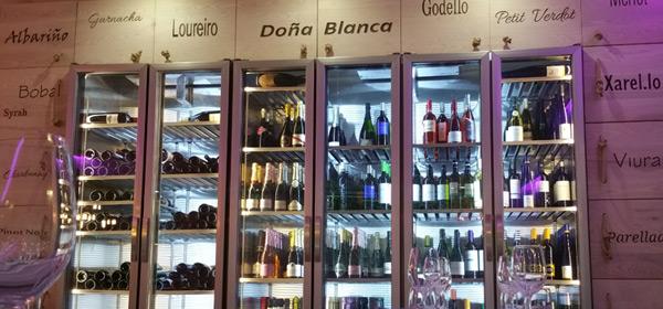 vinos-bodega-bienvenida