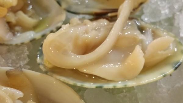 mariscos-almeja-de-carril