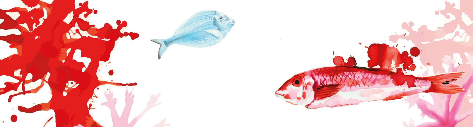 cabecera-carta-pescados